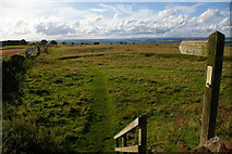 NY9569 : Course of Hadrian's Wall and long distance path, Errington Hill Head by Christopher Hilton