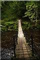 NY7963 : Allen Banks: suspension bridge over River Allen by Christopher Hilton