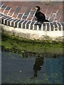 TQ2884 : Cormorant on the lock by Dave Pickersgill