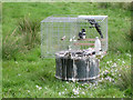 SP2186 : Two magpies in a cage in a field by Robin Stott