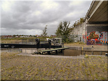 SJ8196 : Pomona Lock by David Dixon