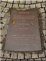 SS6692 : Captain Cat (plaque) by David Dixon