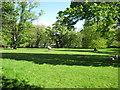 NY6819 : Field  alongside  the  River  Eden by Martin Dawes