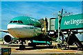 O1642 : Dublin International Airport - Departure via Aer Lingus by Suzanne Mischyshyn