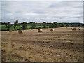 SP1362 : Line of a brook south of Elmhurst Farm by Robin Stott