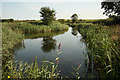 SK6336 : Grantham Canal by Richard Croft