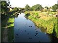 SP1592 : Birmingham & Fazeley Canal: Minworth by Nigel Cox