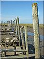 TG0044 : Wooden jetties, Morston Quay by Pauline E