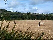 SK2171 : Harvested field adjoining Longreave Lane by Graham Hogg