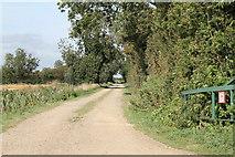TF1122 : Private Track off Dyke Drove by J.Hannan-Briggs