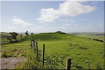 SO1559 : Fence to Castell Crugerydd by Bill Nicholls