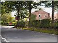 SJ9486 : Springfield Farm (Cattery), Torkington Road by David Dixon