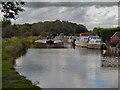 SJ9483 : Macclesfield Canal by David Dixon