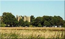 TQ7825 : Bodiam Castle by nick macneill
