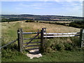 SP9617 : Dunstable Downs from the lower slopes of Gallows Hill by Peter S