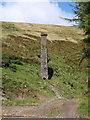 SC4087 : The old chimney by Andrew Abbott
