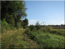 TL6353 : Stour Valley byway by John Sutton