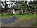 C0001 : Derelict cottage on R252 by Ian Paterson