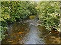 SJ9786 : River Goyt at Strines by David Dixon