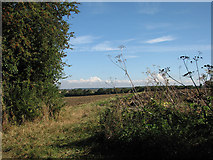 TL6353 : At a bend in the byway by John Sutton