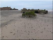 TA4115 : Debris on Kilnsea Beach by Mat Fascione