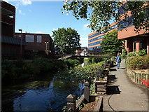 SJ9223 : Riverway, Stafford by Tim Marshall