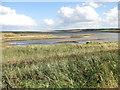 TG0544 : Arnold's Marsh by Pauline E