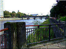 NS3421 : The River Ayr by Thomas Nugent