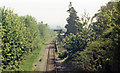 ST5672 : Clifton Bridge station (remains), 1987 by Ben Brooksbank