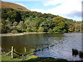 NY2520 : Otterbield Bay, Derwent Water by Ian S