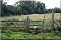 SP7533 : Path to Thornborough by Philip Jeffrey