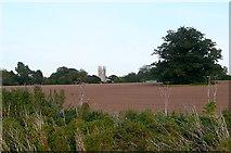SK7288 : Towards Clayworth church by Graham Horn