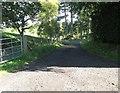 NO1238 : Track leading to Kercock by James Denham