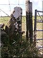 SN1731 : Redundant stone gate post (number  ) by chris whitehouse