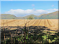 NS8994 : View towards the Ochils by Lis Burke