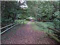 TL4802 : Essex Way, from footbridge over M11 by Roger Jones
