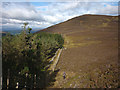 NN9360 : Upper edge of the forest, Creag Chuinnlean by Karl and Ali