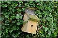 J3268 : Bird box, Minnowburn, Belfast (3) by Albert Bridge