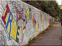 SJ8297 : Irwell Path by David Dixon