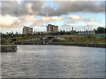 SJ8196 : Manchester Ship Canal, Pomona Dock Number 3 by David Dixon