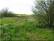TR3256 : View from bridleway alongside the A256 by Nick Smith