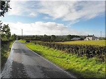 H4963 : Rosaleen Road by Kenneth  Allen