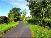 H4963 : Rosaleen Road, Letfern by Kenneth  Allen