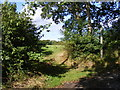 TM3679 : Banks Lane Bridleway to New Road by Adrian Cable
