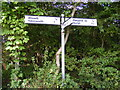 TM3680 : Roadsign at Gray's Lane  junction by Adrian Cable