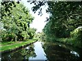 SO8480 : Staffs and Worcs canal above Debdale lock by Christine Johnstone