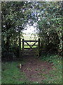SP7432 : Path through Pilch Field nature reserve by Philip Jeffrey