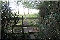 SP7432 : Path toward Pear Tree Hill farm by Philip Jeffrey