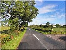 H4965 : Augher Point Road by Kenneth  Allen