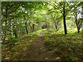 NS3978 : Path beside the River Leven by Lairich Rig